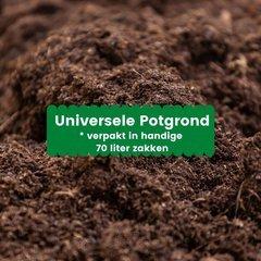 Universele potgrond